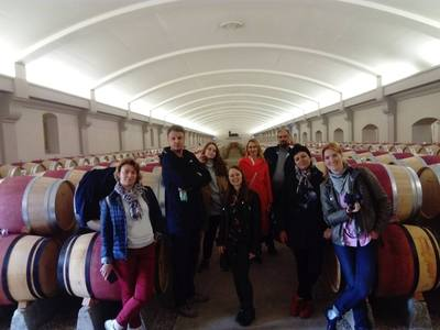 A week in the Bordeaux Vineyard with Alaïs. First experience as a wine guide