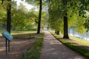 Gardens and parks in Russia: must-visit list