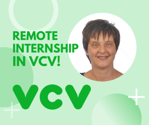 Online internship in VCV: intern's experience